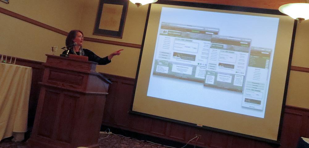 Jenny Brandon speaking on responsive design at HighEdWeb Michigan 2014