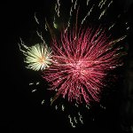 Red and white fireworks in the dark sky
