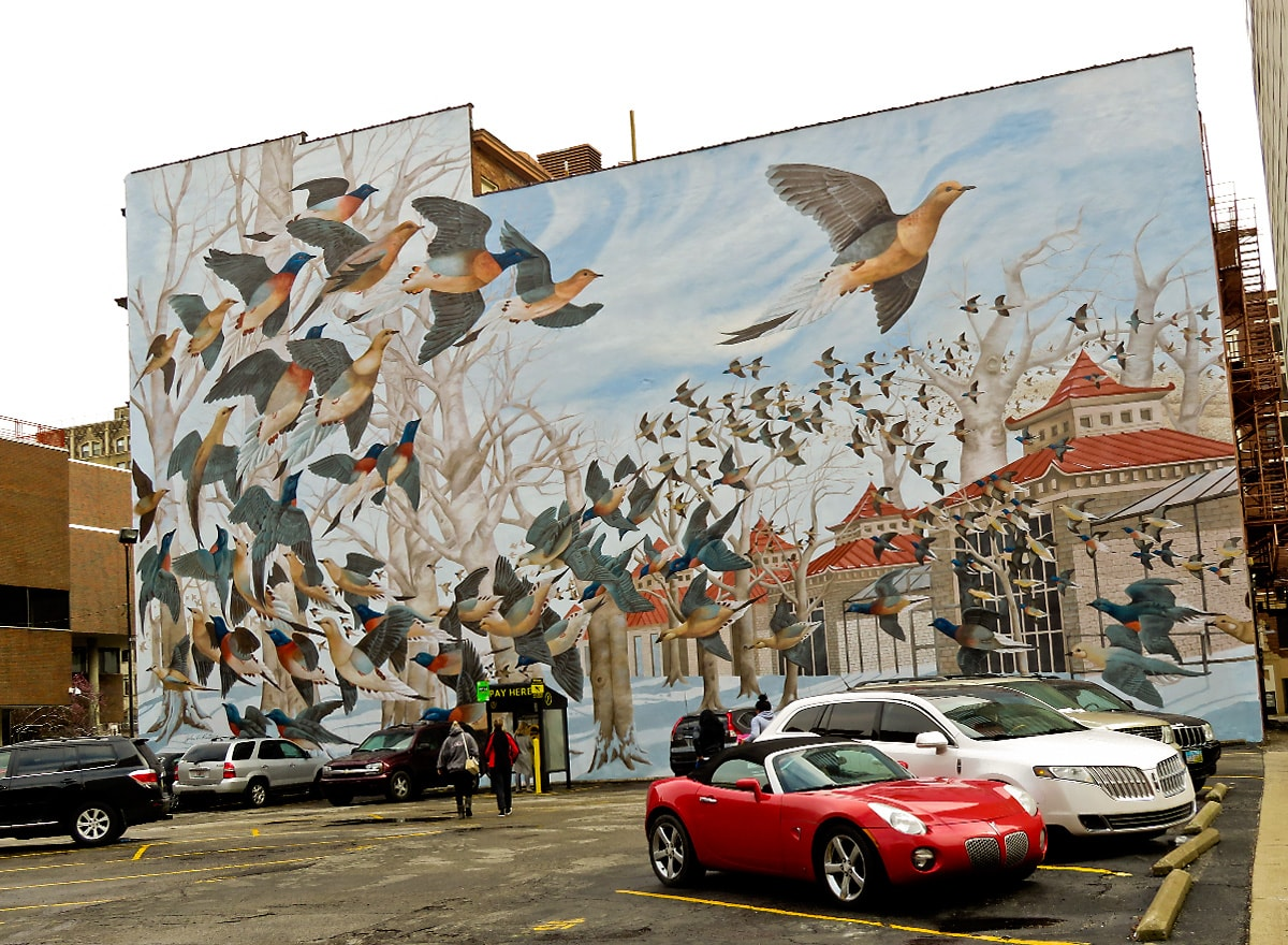 Building mural shows Martha the passenger pigeon leads a flock of passenger pigeons