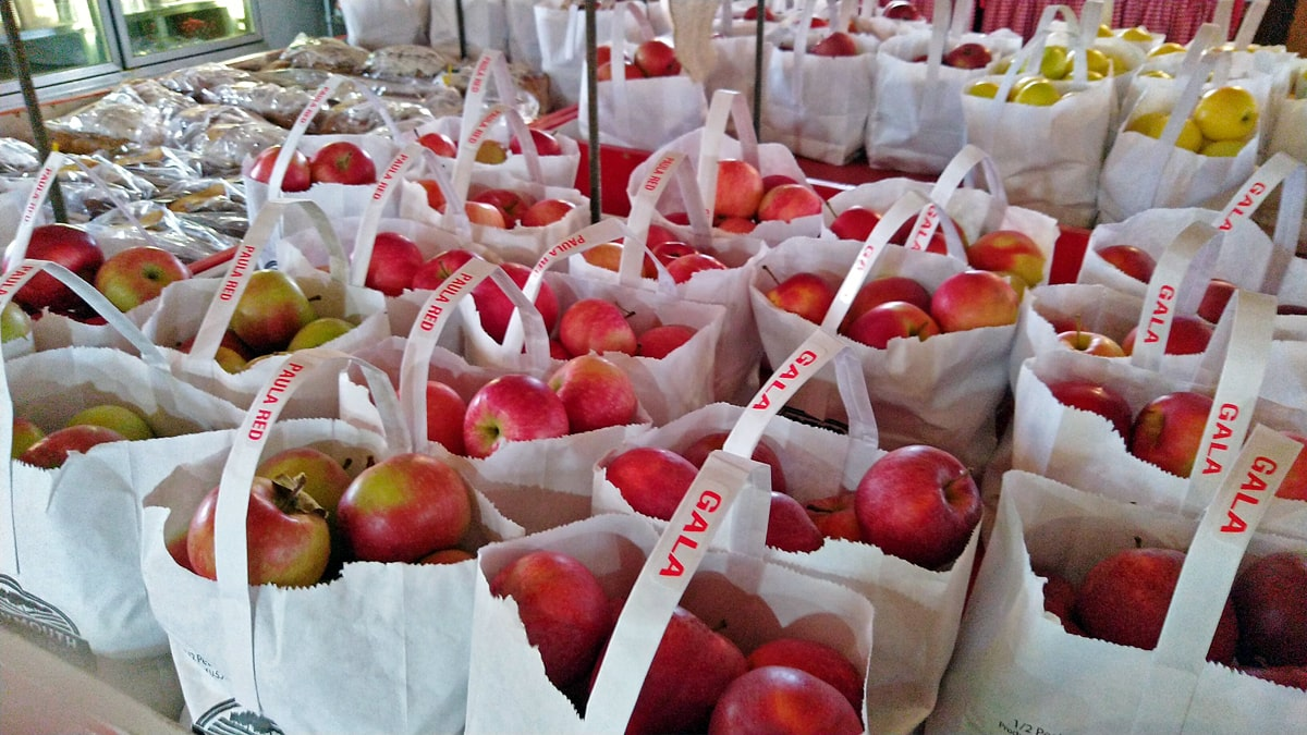 white bags of Gala and Paula Red apples on the table at the cider mill, wrapped cinnamon rolls and apple bread behind the bagged apples.