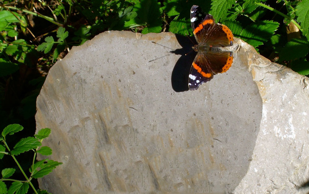 Milestone with dark brown butterfly