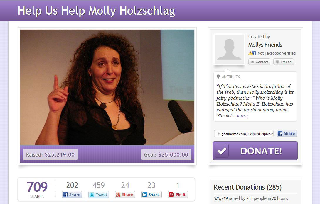 Molly Holzschlag health insurance donation page with number of donors and amount