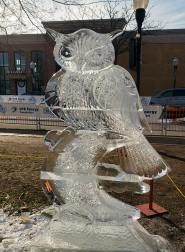 ice sculpture owl seems to be following you whereever you go.