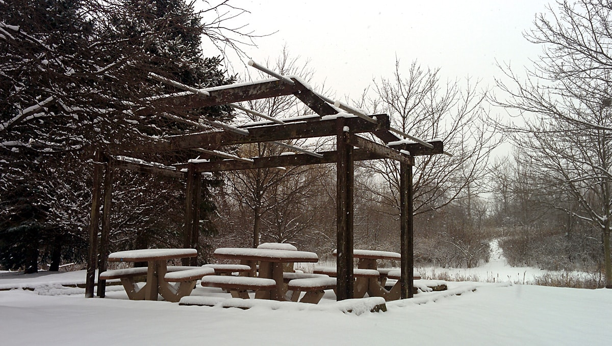 snow covered gazebo with trees in the background
