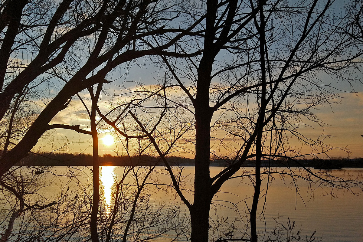 sunrise through the bare tree branches that border the calm lake waters.