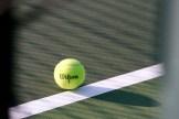Wilson tennis ball hits the line
