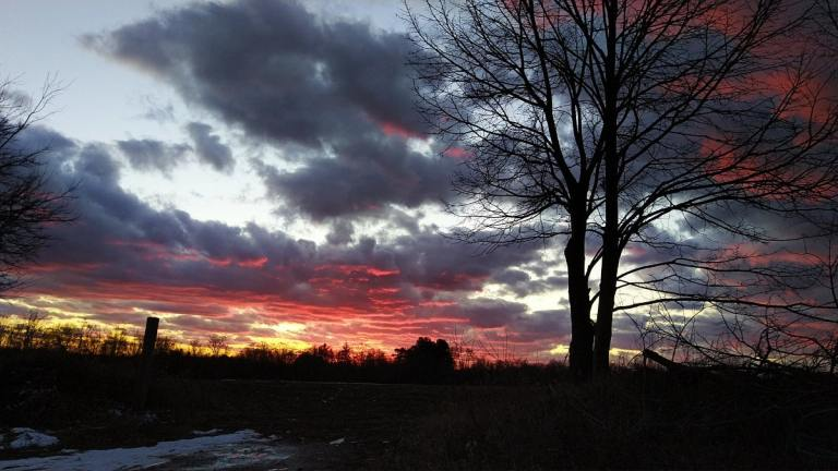 Brilliant red, yellow, and orange colors streak across the horizon over the shadows of the treeline, cornfield, and a silhouetted tree against the dark gray clouds and blue sky.