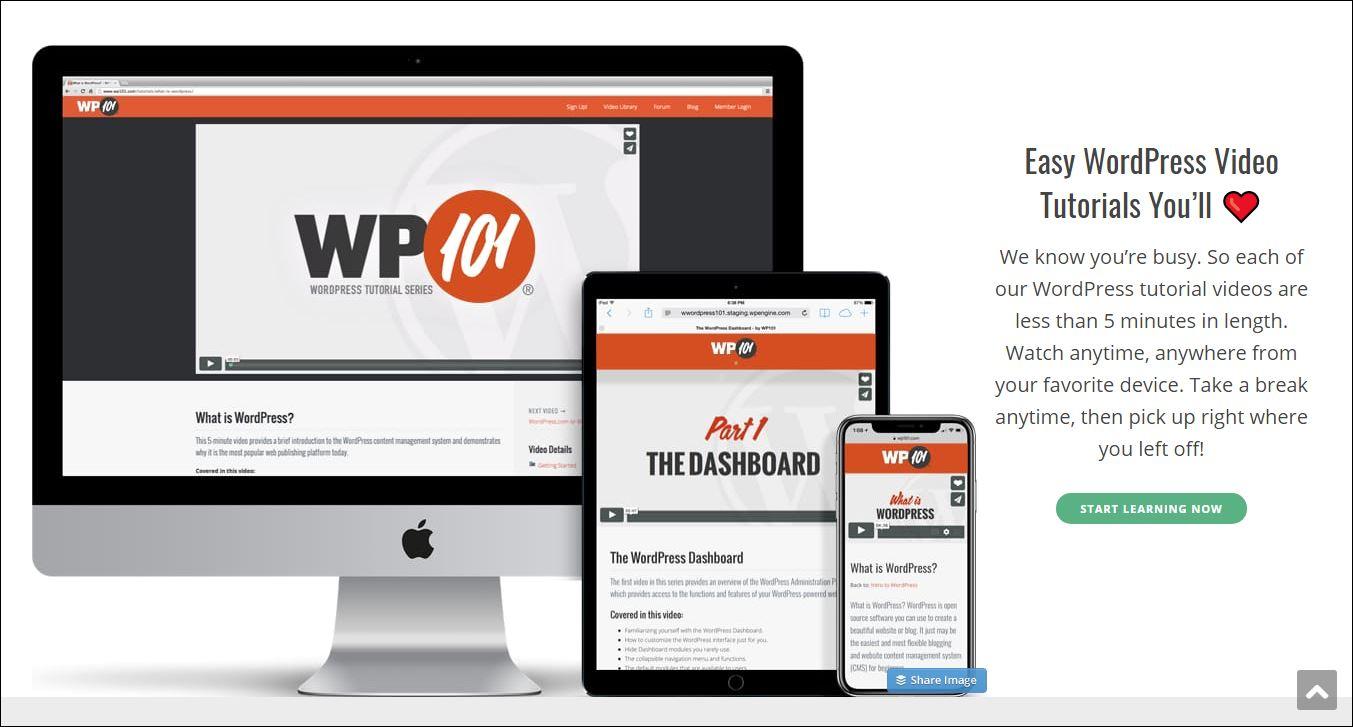 WP 101 WordPress training videos