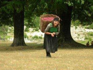Reis naar het Albanië van de locals