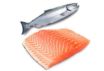 salmon350