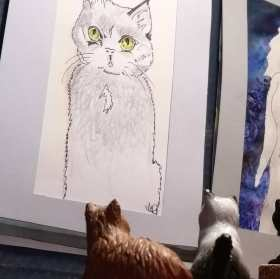 Jo Coffeys drawings are of many different cats with their own stories