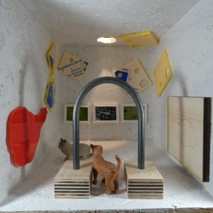 Amy Grogan made an exhibition for mice and the tiny cats