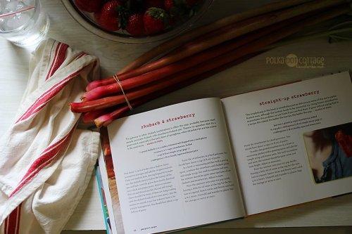 Rhubarb + Strawberry Pops @lclarke522
