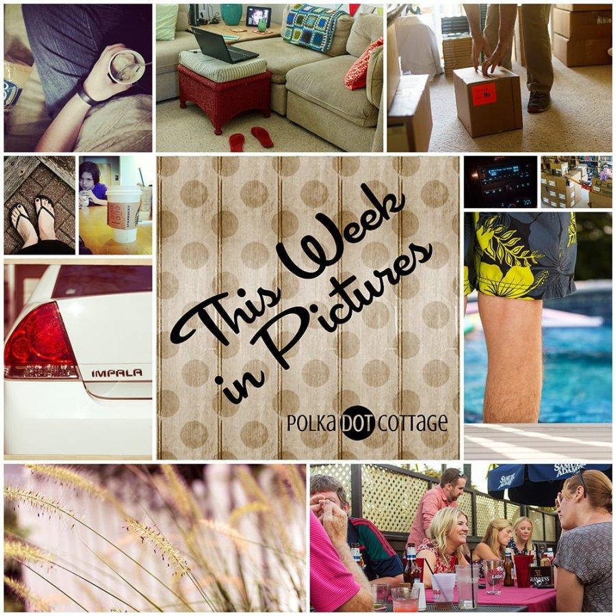 This Week in Pictures, Week 35, 2014