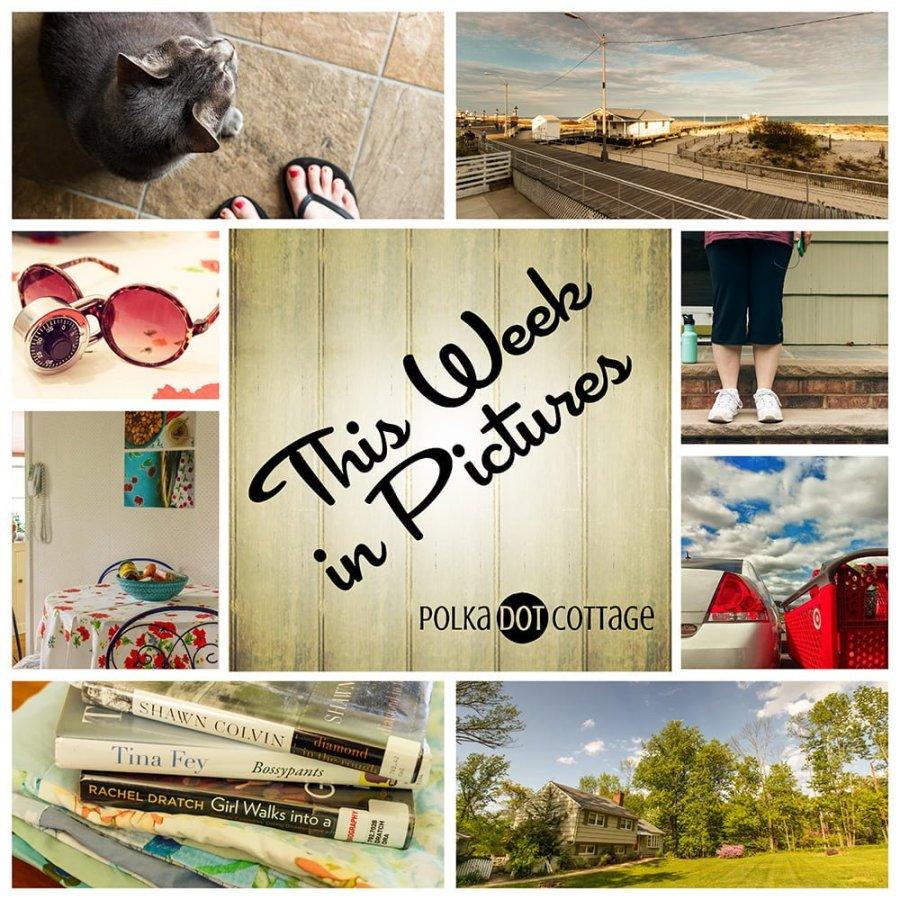 This Week in Pictures, Week 20, 2015