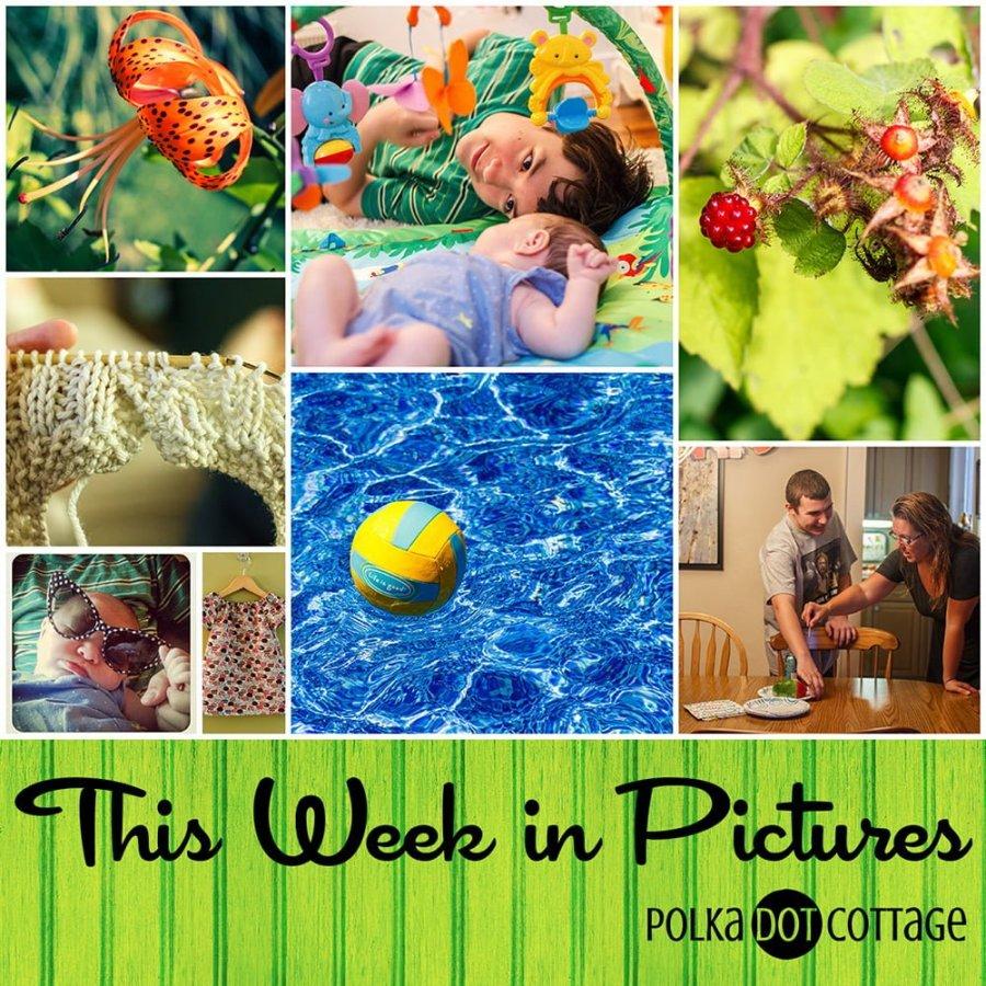 This Week in Pictures, Week 30, 2015
