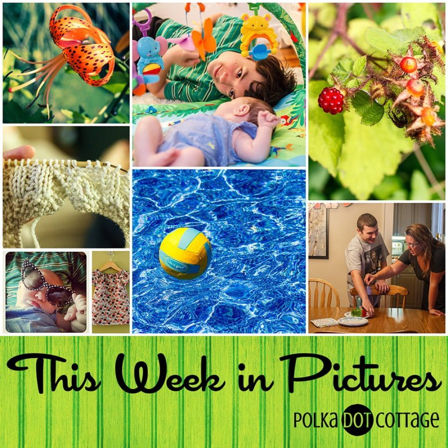 This Week in Pictures, Week 30, 2015