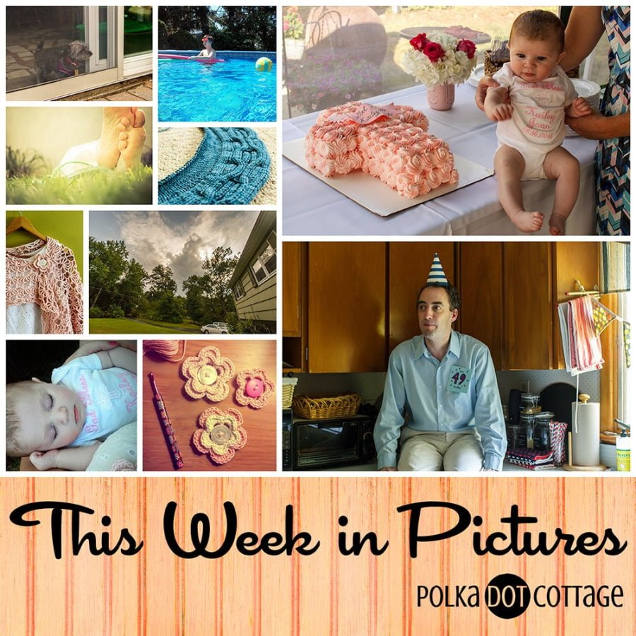 This Week in Pictures, Week 34, 2015