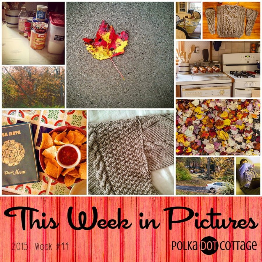 This Week in Pictures, Week 44, 2015