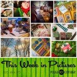 This Week in Pictures, Week 49, 2015