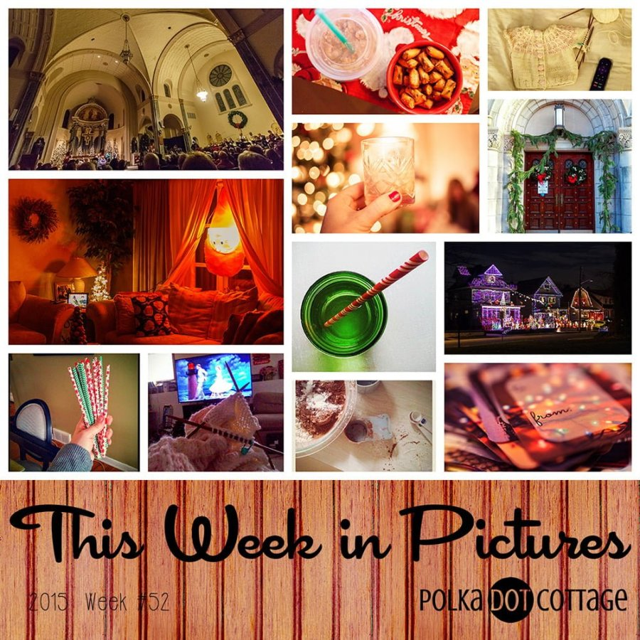 This Ween in Pictures, Week 52, 2015