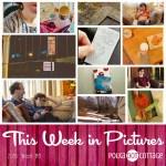 This Week in Pictures, Week 8, 2016