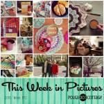 This Week in Pictures, Week 13, 2016