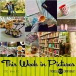 This Week in Pictures, Week 19, 2016