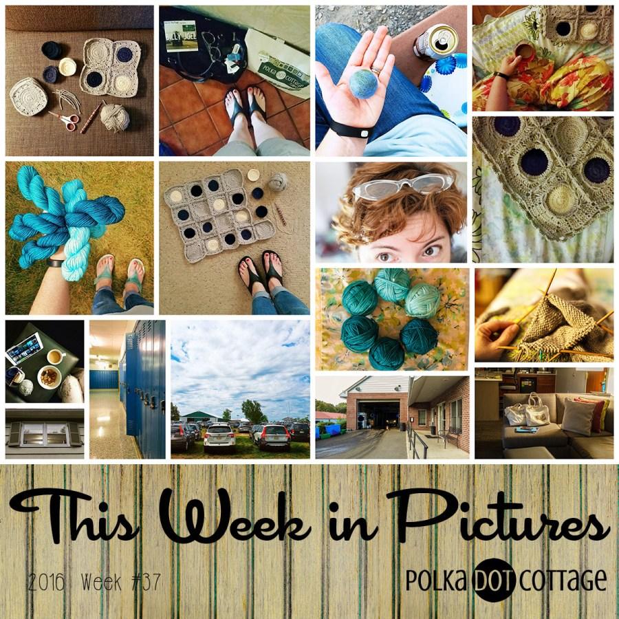 This Week in Pictures, Week 37, 2016