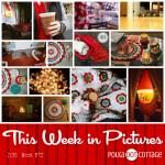 This Week in Pictures, Week 49, 2016