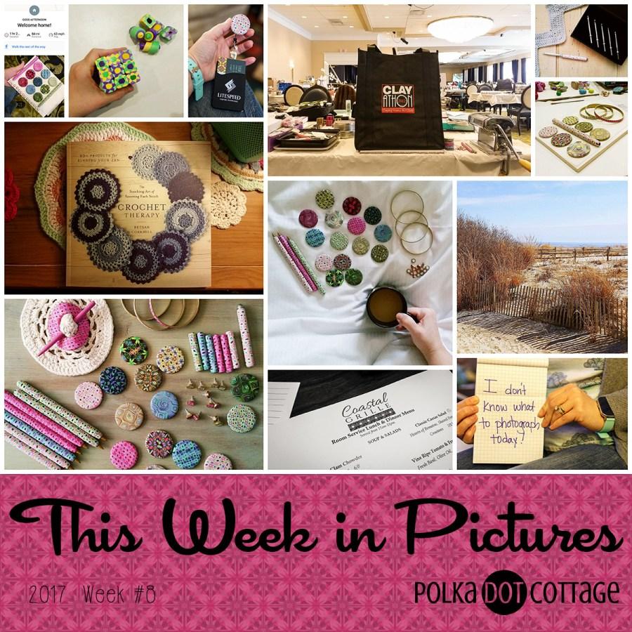 This Week in Pictures, Week 8, 2017