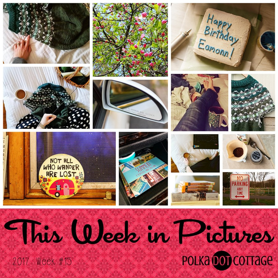 This Week in Pictures, Week 15, 2017