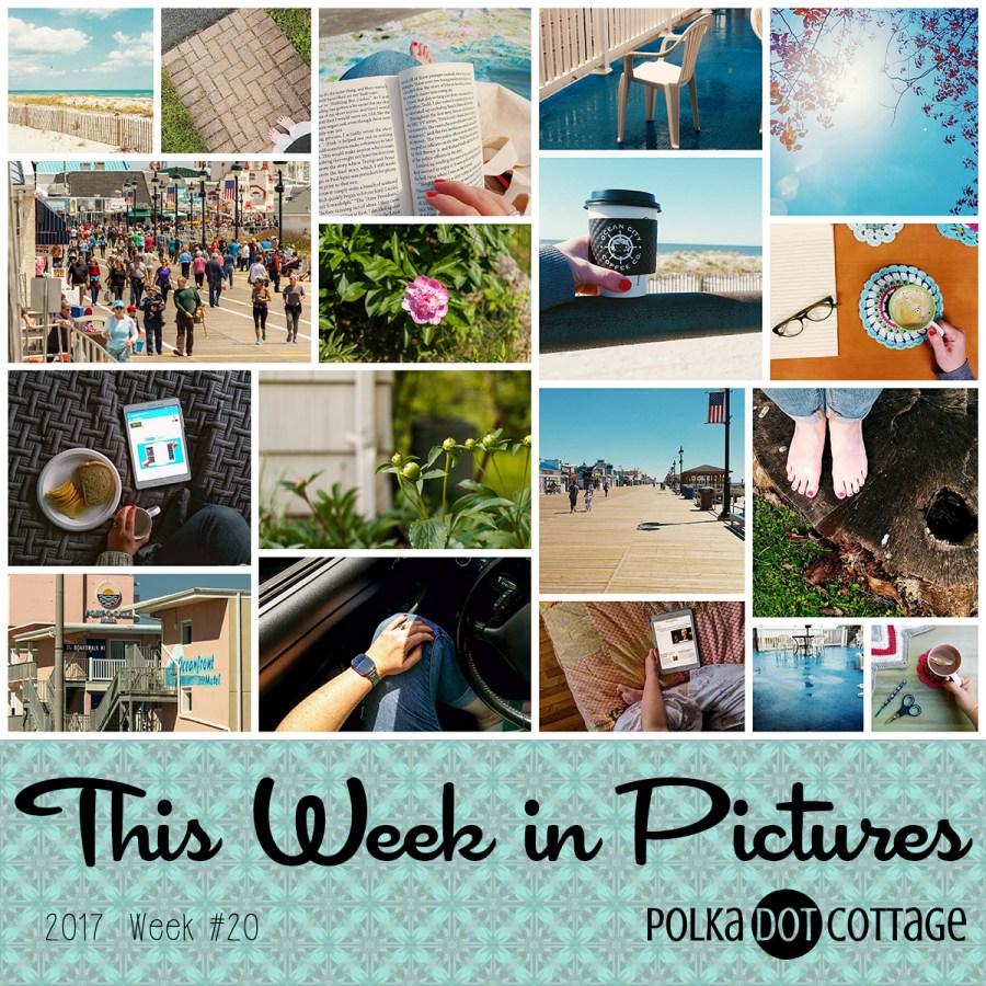 This Week in Pictures, Week 20, 2017