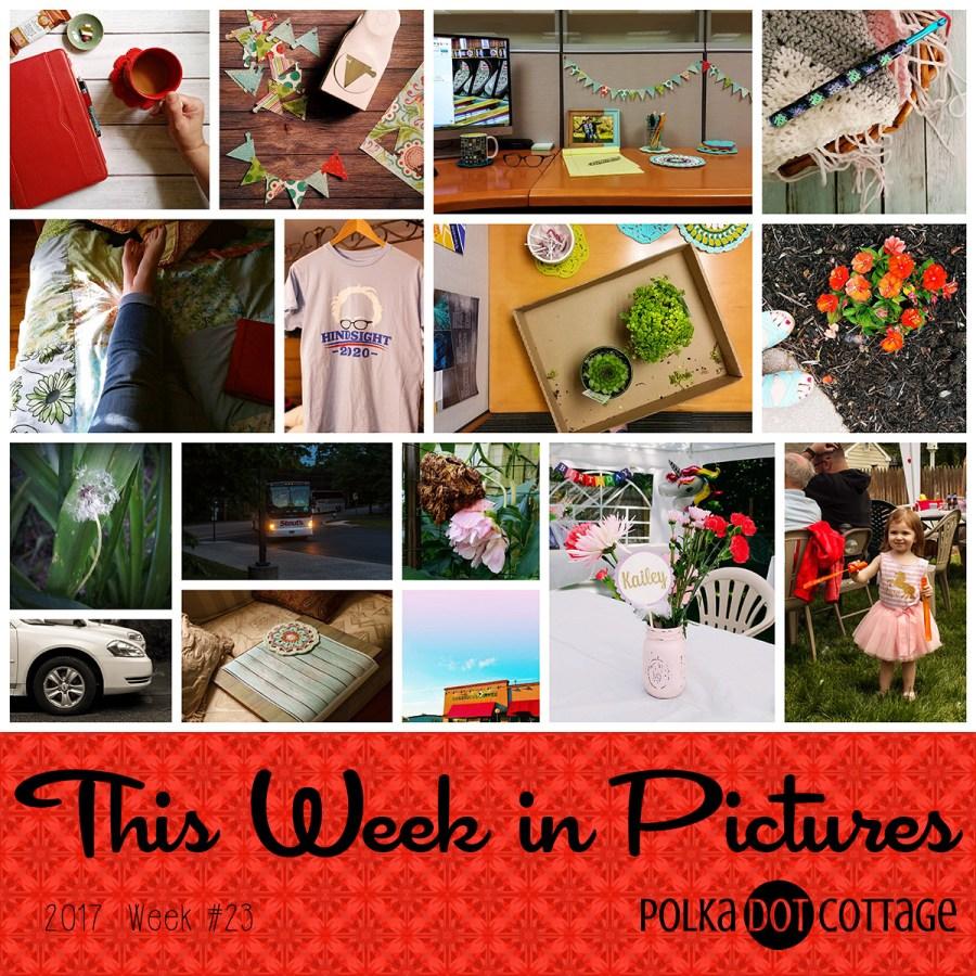 This Week in Pictures, Week 23, 2017
