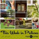 This Week in Pictures, Week 26, 2017