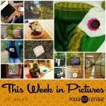 This Week in Pictures, Week 40, 2017