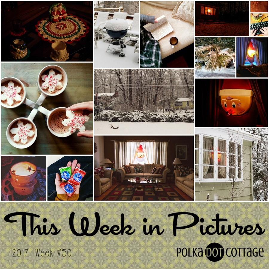 This Week in Pictures, Week 50, 2017