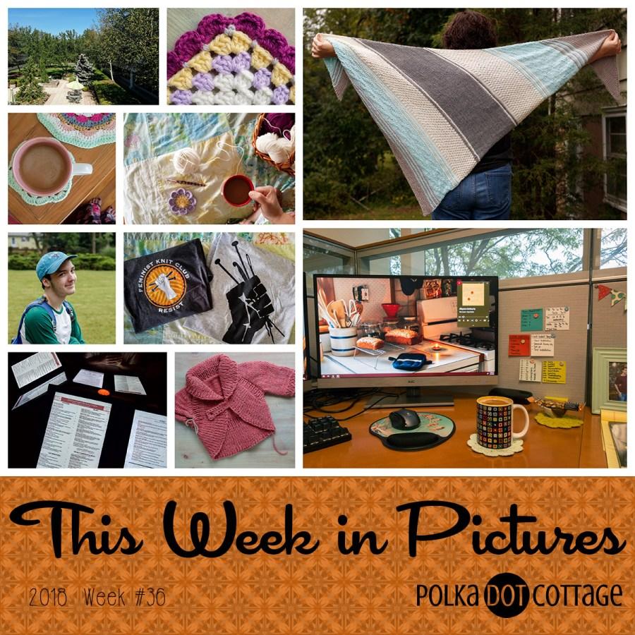 This Week in Pictures, Week 36, 2018