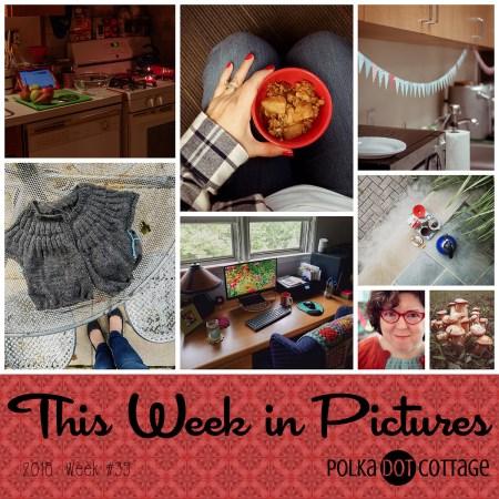 This Week in Pictures, Week 39, 2018