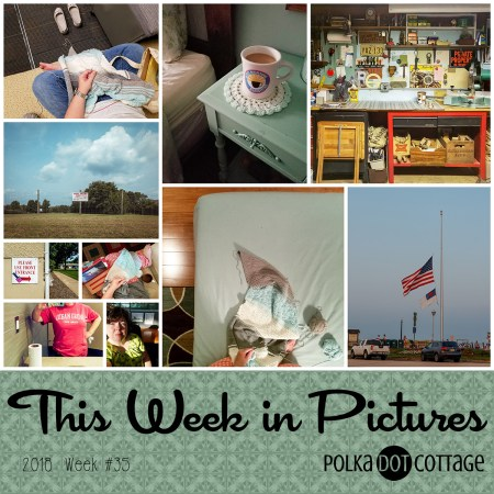 This Week in Pictures, Week 35, 2018