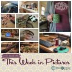 This Week in Pictures, Week 11, 2019