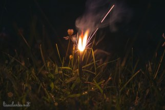 Sometimes it makes me sad that my kids are no longer little and interested in spontaneous Summer fun. But you know what? You can actually stick a sparkler in the wet grass, light it, and have a fun little photo shoot all by yourself. And you can repeat as necessary without anybody getting impatient about all of the picture taking 📷. Fun night. Thank goodness I am easily entertained 😁