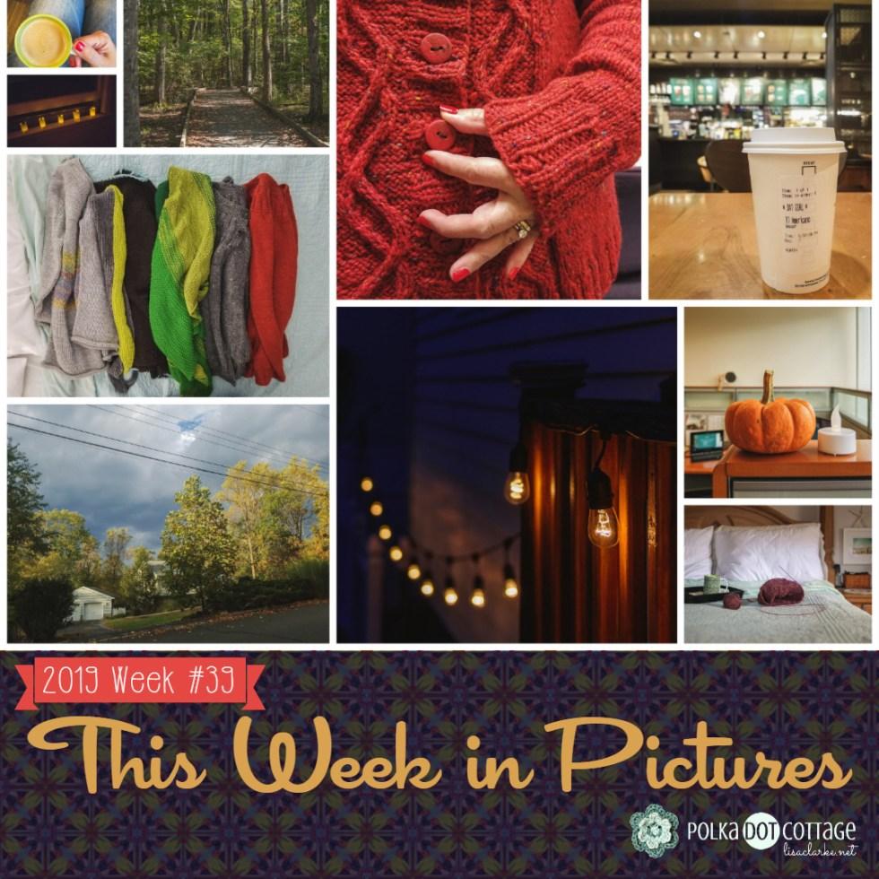 This Week in Pictures, Week 40, 2019