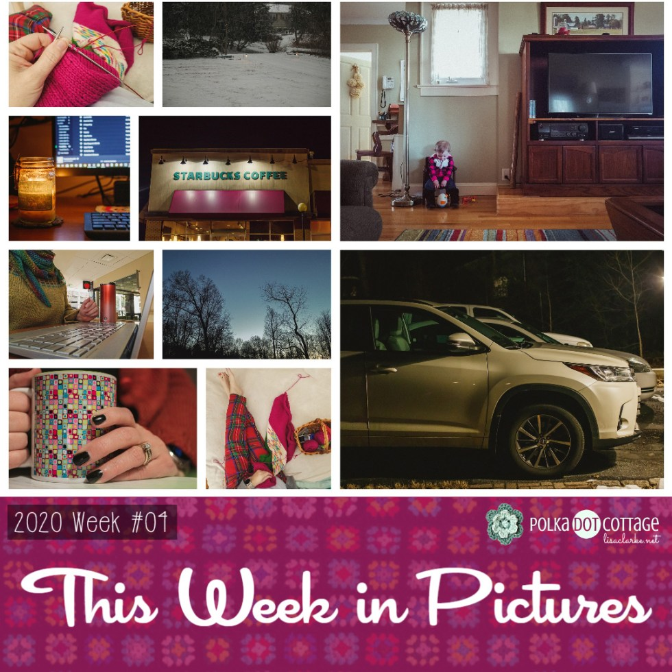 This Week in Pictures, Week 4, 2020