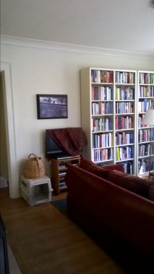 photo of living room with couch blocking walkway