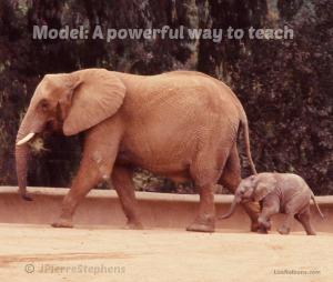 model:A Powerful Way to Teach Reflection LisaNalbone.com Photo copyright John Pierre Stephens