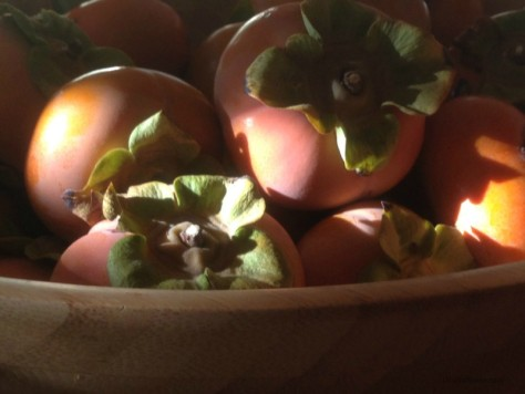 Bowl of persimmons in sunlight and shadow. LisaNalbone.com