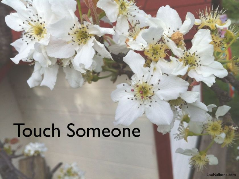 happy-helpers-touch