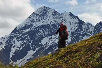 Bold Peak, Alaska, by Paxson Woelber
