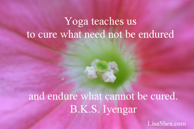 yoga-endure